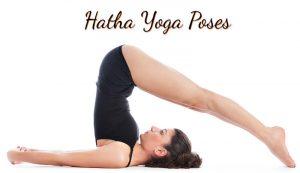 hatha yoga poses  best hatha yoga asanas  spiritual