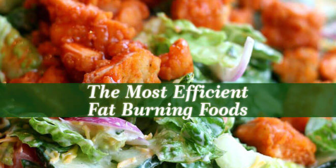 The Most Efficient Fat Burning Foods