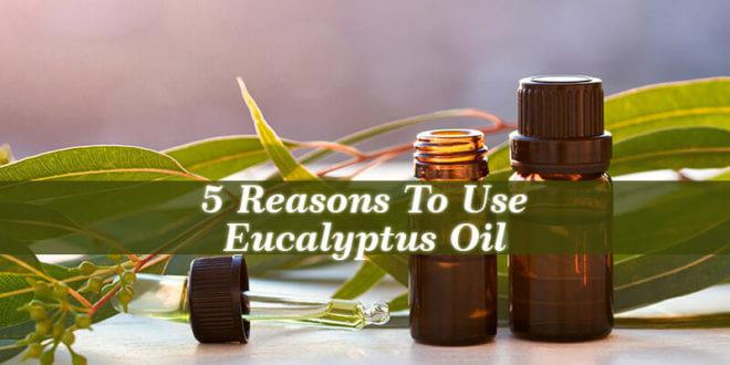 Reasons To Use Eucalyptus Oil