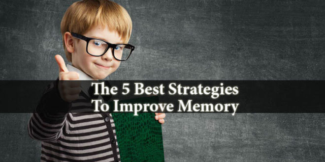 Strategies To Improve Memory