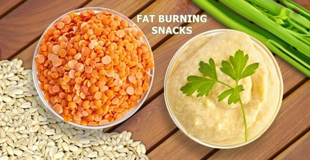 fat burning snacks