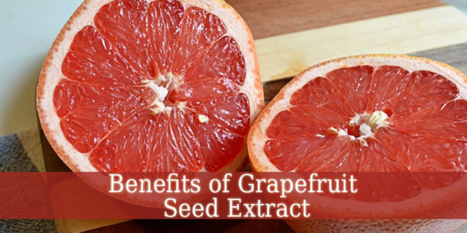 Benefits of Grapefruit Seed