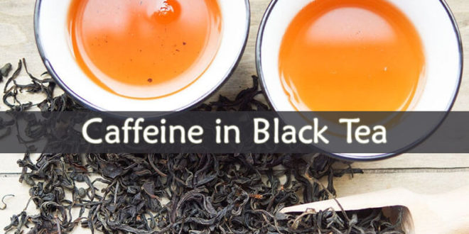 Caffeine in Black Tea