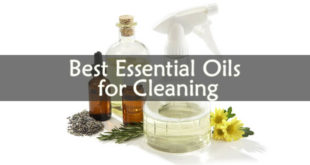 Best Essential Oils for Cleaning