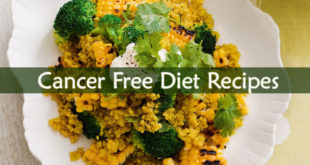 Cancer Free Diet Recipes