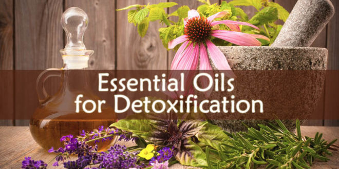 Essential Oils for Detoxification