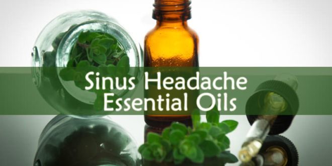 Sinus Headache Essential Oils