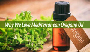 Mediterranean Oregano Oil