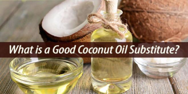 coconut oil substitute