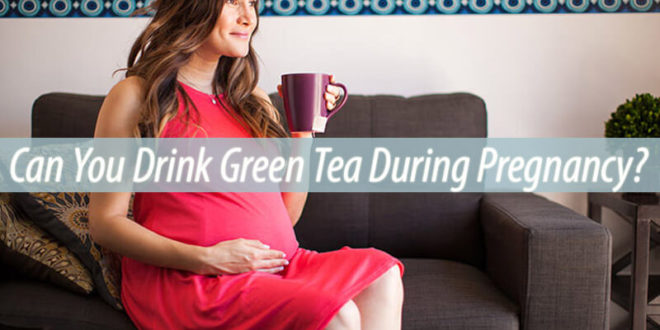 green tea during pregnancy