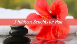 3 Hibiscus Benefits for Hair