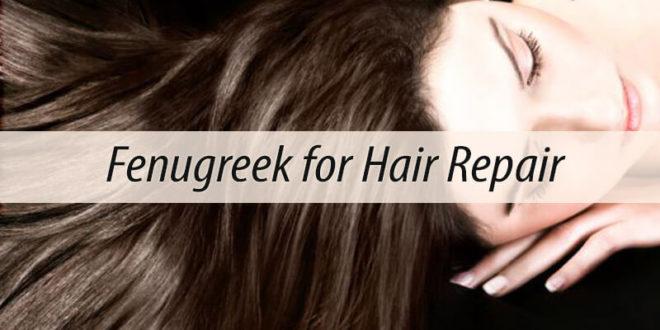 Fenugreek for Hair Repair