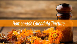 calendula tincture