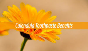 calendula toothpaste benefits