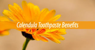 calendula toothpaste benefits