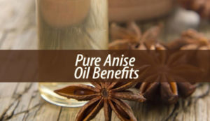 pure anise oil