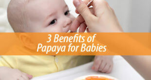 3 Benefits of Papaya for Babies