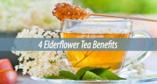 4 Elderflower Tea Benefits