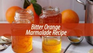 Bitter Orange Marmalade Recipe