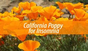 California Poppy for Insomnia