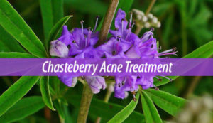 Chasteberry Acne Treatment