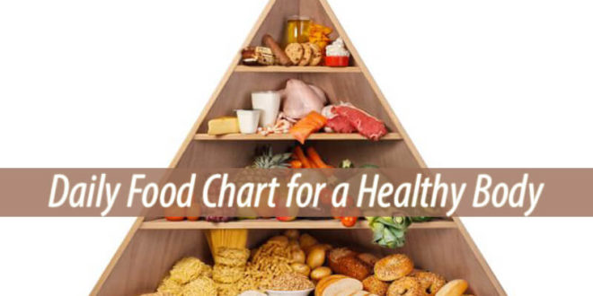 Daily Food Chart for a Healthy Body