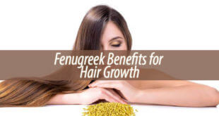 Fenugreek Benefits for Hair Growth