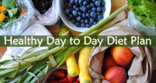 Healthy Day to Day Diet Plan