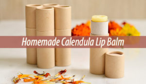 Homemade Calendula Lip Balm