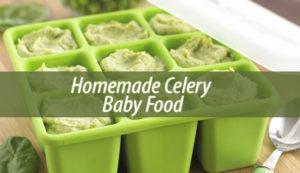 Homemade Celery Baby Food