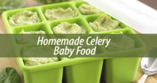 Homemade Celery Baby Food