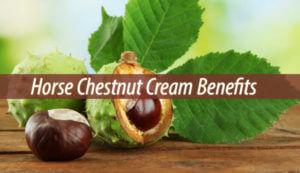 Horse Chestnut Cream Benefits