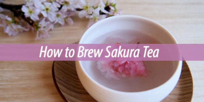 How to Brew Sakura Tea
