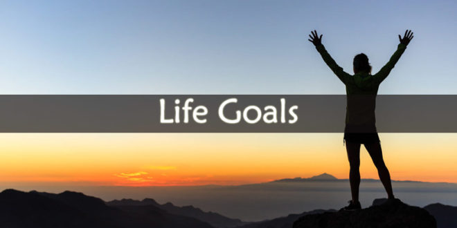 Average Life Goals