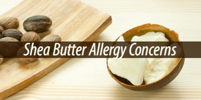 Shea Butter Allergy Concerns