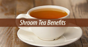 Shroom Tea Benefits