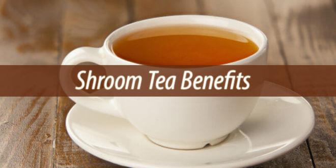 Shroom Tea Benefits