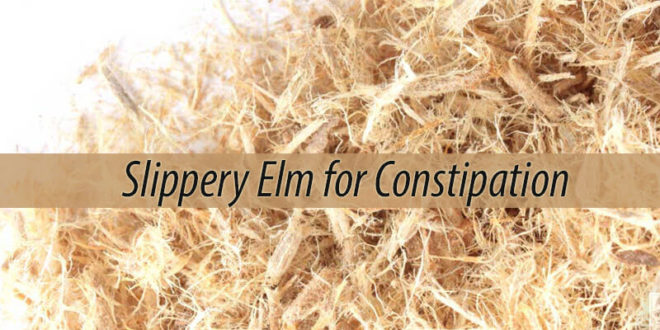 Slippery Elm for Constipation