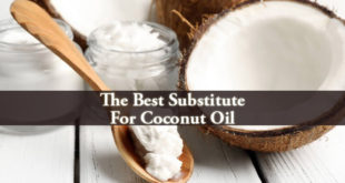Substitute For Coconut Oil