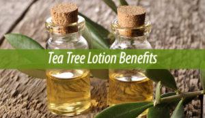 Tea Tree Lotion Benefits