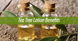Tea Tree Lotion Benefits