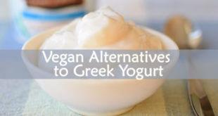 Vegan Alternatives to Greek Yogurt