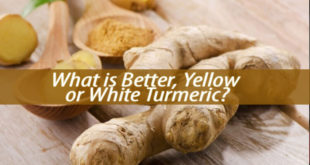 What is Better, Yellow or White Turmeric