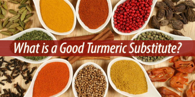 What is a Good Turmeric Substitute
