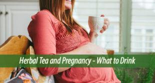 herbal teas and pregnancy