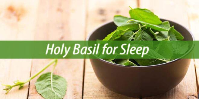 holy basil for sleep