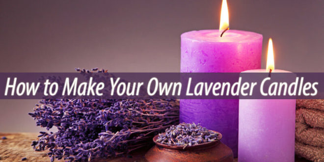 lavender candles