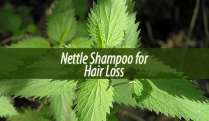 nettle shampoo for hair loss