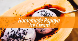 papaya ice cream
