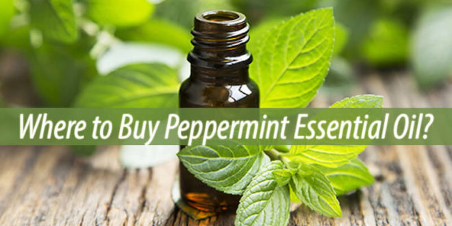 where to buy peppermint essential oil